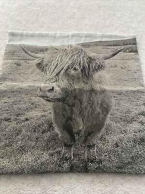 £2.50 • Buy Highland Cow Cushion Cover From Dunelm Mill 44 X 44 Centimeters