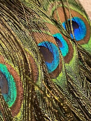 """£17.26 • Buy Beautiful Colorful 12""""  Peacock Feather Hand Fan USA Seller New Old Stock"""