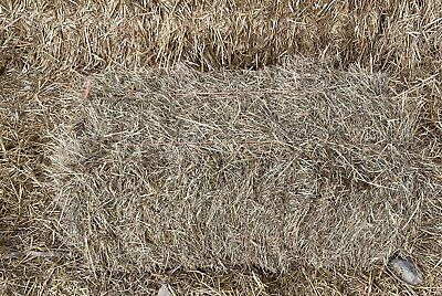 £16.99 • Buy Meadow Hay Bale In A Bag Easy To Store Quality Hay For Your Pet.