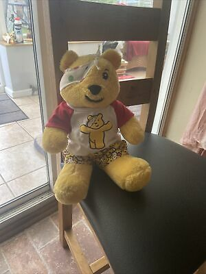 £20 • Buy Very Rare Collectable Pudsey 2008 Build A Bear