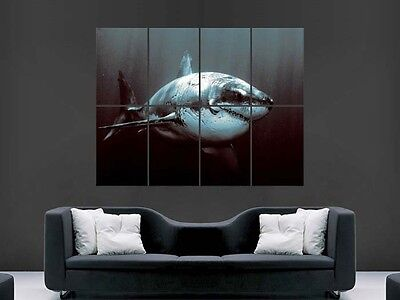 £17.99 • Buy Great White Shark Poster  Art Wall Picture   Giant Huge
