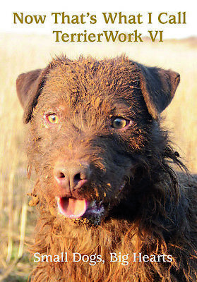 DARCY JONATHAN TERRIERS BOOK NOW THATS WHAT I CALL TERRIER WORK 6 VI SIX New • 22.50£