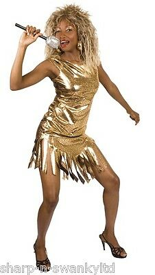 Ladies Pop Star Famous Celebrity Tina Turner 1980s Fancy Dress Costume Outfit • 21.99£