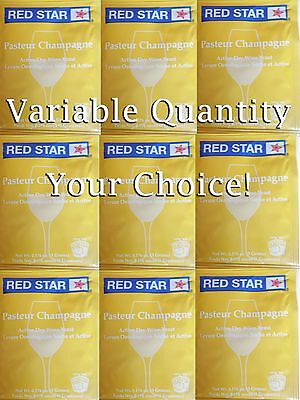 £4.02 • Buy You Pick From 1 To 10 Packs Red Star Pasteur Champagne / Premier Blanc - Wine