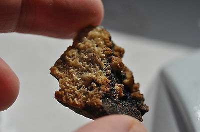 Dolomite / Ankerite - Brownley Hill Mine, Cumbria - Mineral Specimen • 7.50£