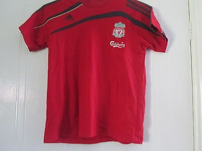 Liverpool  Football Adidas T Shirt Size 13-14 Years Chest /41404 • 4.99£