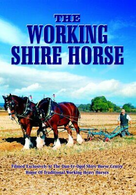 The Working Shire Horse [DVD] - DVD  6EVG The Cheap Fast Free Post • 20.98£