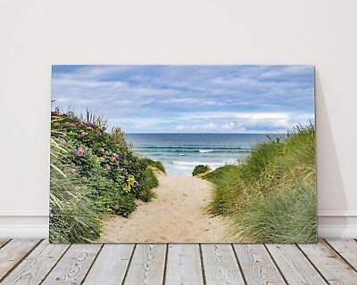 £23.95 • Buy Path To The Beach Fistral Newquay Cornwall Canvas Picture Print Framed