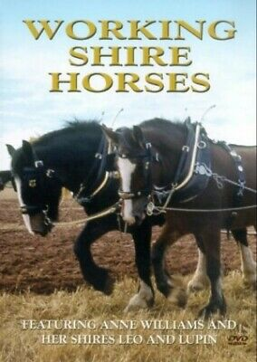 Working Shire Horses [DVD] - DVD  ZGVG The Cheap Fast Free Post • 3.86£