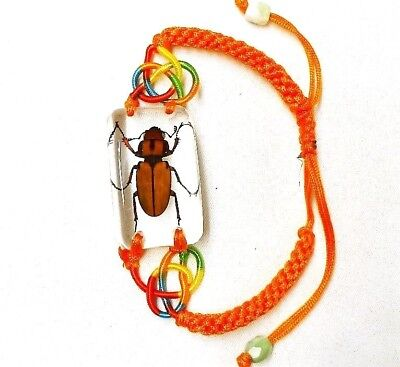 $5.60 • Buy Yellow Beetle Insect Bracelet In Resin Specimen Collection