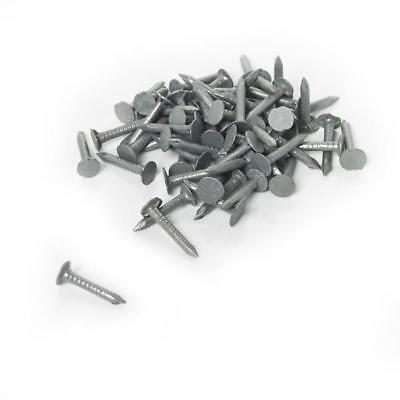 20mm Clout Nails, Felt Nails, Galvanised, Shed, Hutch, Kennel, Pack Of 100 • 2.69£