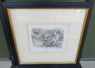 Antique Framed Samuel Howitt Hunting Etching Dogs And Pheasant Orme 1809 • 65£