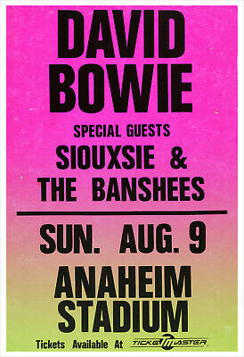 $21.50 • Buy David Bowie - Siouxsie And The Banshees - Concert Poster Print