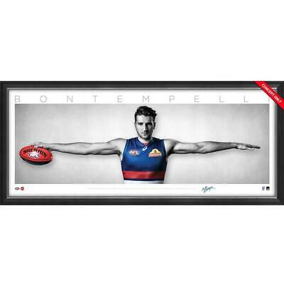 AU195 • Buy Marcus Bontempelli Signed Western Bulldogs Mini Wings Official AFL Print Framed