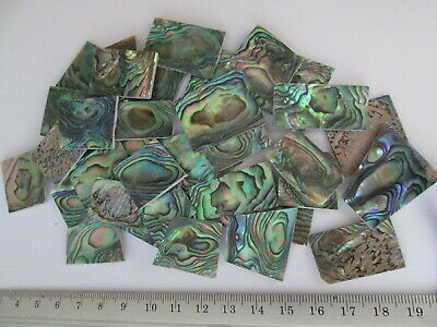 1 Oz  Green Paua Abalone Shell Blanks, Inlay Material . 0.06  Thickness ( 1.5mm) • 25.49£