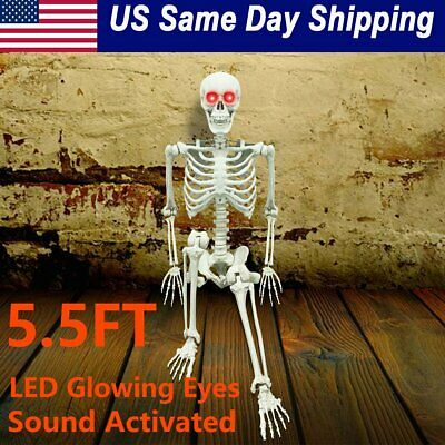 $49.86 • Buy 5.5FT Halloween Skeleton Life Size Pose-N-Stay LED Glowing Eye Sound Activated