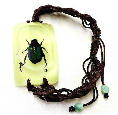 $5.60 • Buy Green Beetle Insect Bracelet In Resin Specimen Collection