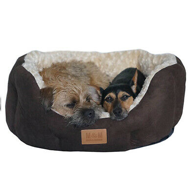 Dogs Beds - Cosy Soft Beds. CLEARANCE STOCK. CLEARANCE PRICES. • 11.95£