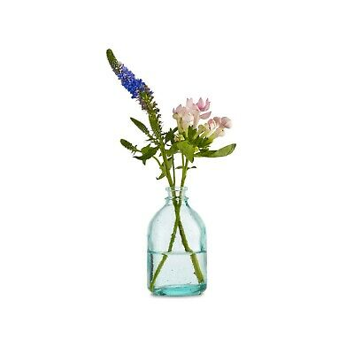 $15.34 • Buy Design Ideas Mason Recycled Blown Glass Vase, Small 7858271
