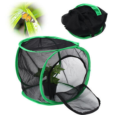 $13.76 • Buy 12'' Foldable Praying Mantis Stick Net Insect Butterfly Chameleon Pop Up Cage