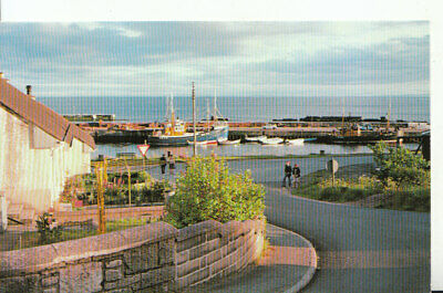 Scotland Postcard - The Harbour - Helmsdale - East Sutherland - Ref 19238A • 2£