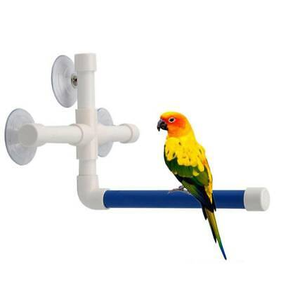 Bird Pet Parrot Cage Training Stand Perch Play Gym Budgie Parakeet Toy FA • 6.36£