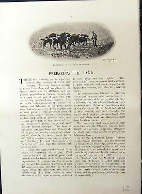 Old Ploughing Oxen Sussex Horses Manuring Land Essex Farming Britain • 22£