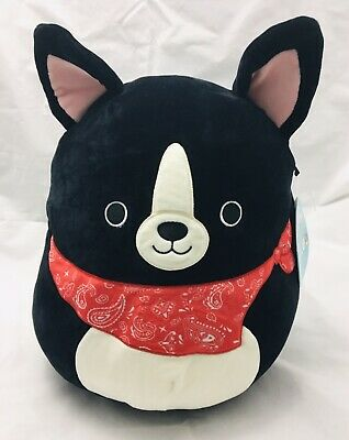 "$ CDN60 • Buy ❤️Squishmallows Teddy The Dog 12"" Kellytoy, New With Tags, Canadian Exclusive❤️"