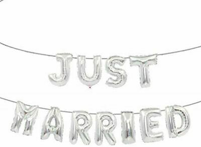 Tri Just Married Banner Silver • 3.99£