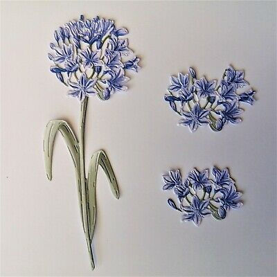 Carnation Craft Die Cuts A Little Bit Fancy Agapanthus Flower Card Toppers  • 2.79£