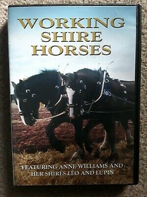 Working Shire Horses [DVD]  • 4.99£