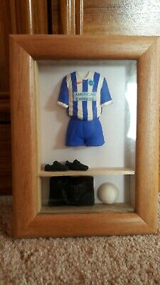 Brighton And Hove Albion 3d Framed Miniature Football Shirt Kit • 15£