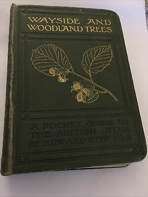 Wayside And Woodland Trees By Edward Step Antique Book • 12£