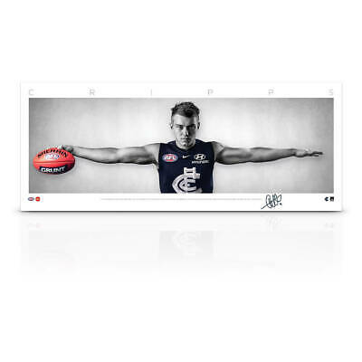 AU79 • Buy Patrick Cripps Signed Carlton Mini Wings Official AFL Print ONLY BRAND NEW