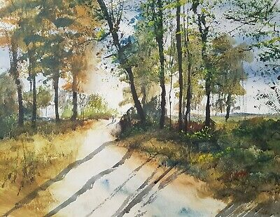 Cannock Chase 15x11in Watercolour Painting By Steven Cronin Original Signed Art • 29.99£