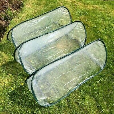 Pop-Up Garden Poly Cloche/ Cold Frame / Mini Greenhouse - Available In 3 Sizes • 25.50£