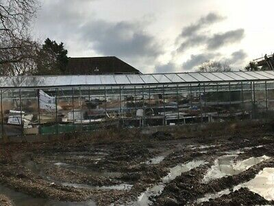 Commercial Greenhouse For Sale As Photographs • 107£