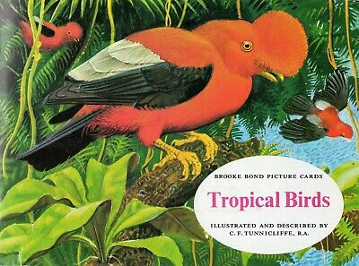 Brooke Bond. RE-ISSUE Album With Cards, B9: 'Tropical Birds' (Small Print BLACK) • 2.99£