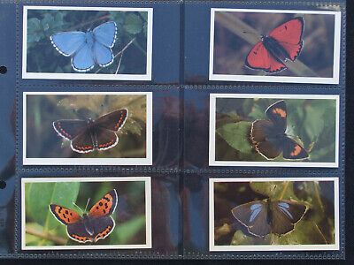 Grandee Cigarette/Cigar Cards BRITISH BUTTERFLIES - Set Of 32 In Sleeves • 3.75£