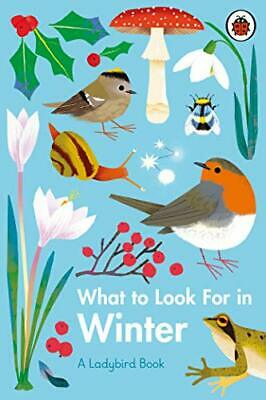 What To Look For In Winter (A Ladybird Book) New Hardcover Book • 6.48£