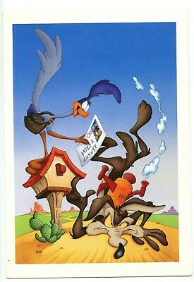 Road Runner & Wile E. Coyote Post Card • 0.71£