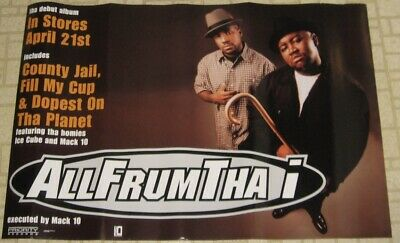 $34.99 • Buy Rare All Frum Tha Debut Album Poster 1998 Featuring Homies, Ice Cube & Mack 10