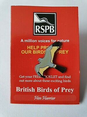 £2.99 • Buy RSPB Pin Badge - HEN HARRIER On British Birds Of Prey Red Trifold Backing Card