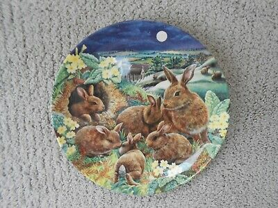 £4 • Buy Bradford Exchange Collectors Rabbit Plate Limited Edition