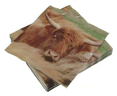 £3.99 • Buy Scottish Highland Cow 3 Ply Paper Napkins -Glen Appin Of Scotland - Ideal Gift