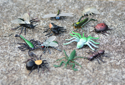 £4.99 • Buy 12pcs Plastic Realistic Insect Model Figure Toys Pack For Kids Assorted Bugs