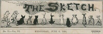 £7.55 • Buy LOUIS WAIN  1894 Antique Print Cats Dogs 1894  Sketch Header  HL1.1792