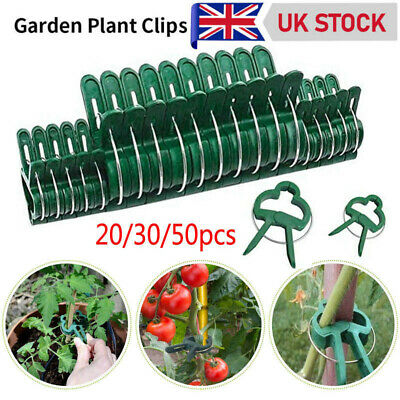£2.69 • Buy 50x Garden Plant Clips Tomato Tie Stem Orchid Support Weatherproof Grow Training