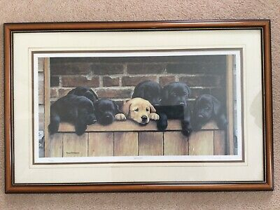 £460 • Buy Nigel Hemming SEVEN UP Labradors Puppy Pups Puppies Limited Edition Print No224
