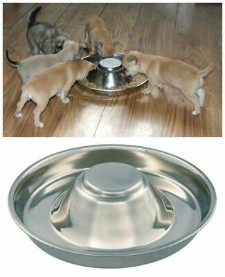 £6.99 • Buy Puppy Dog Pet Litter Food Feeding Weaning Silver Stainless Feeder Bowl Dish 34cm